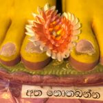 Sri Lanka - Buddhas Fuss © Women Travel
