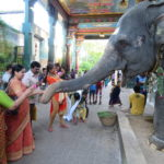 Indien Puducherry Lord Ganesha Tempel © Women Travel